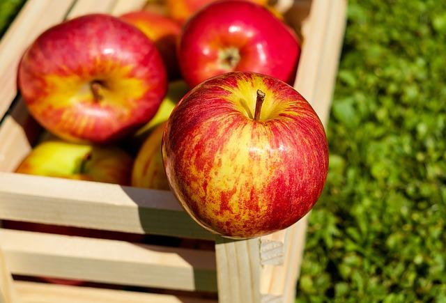 Types of Apples Grown in New York